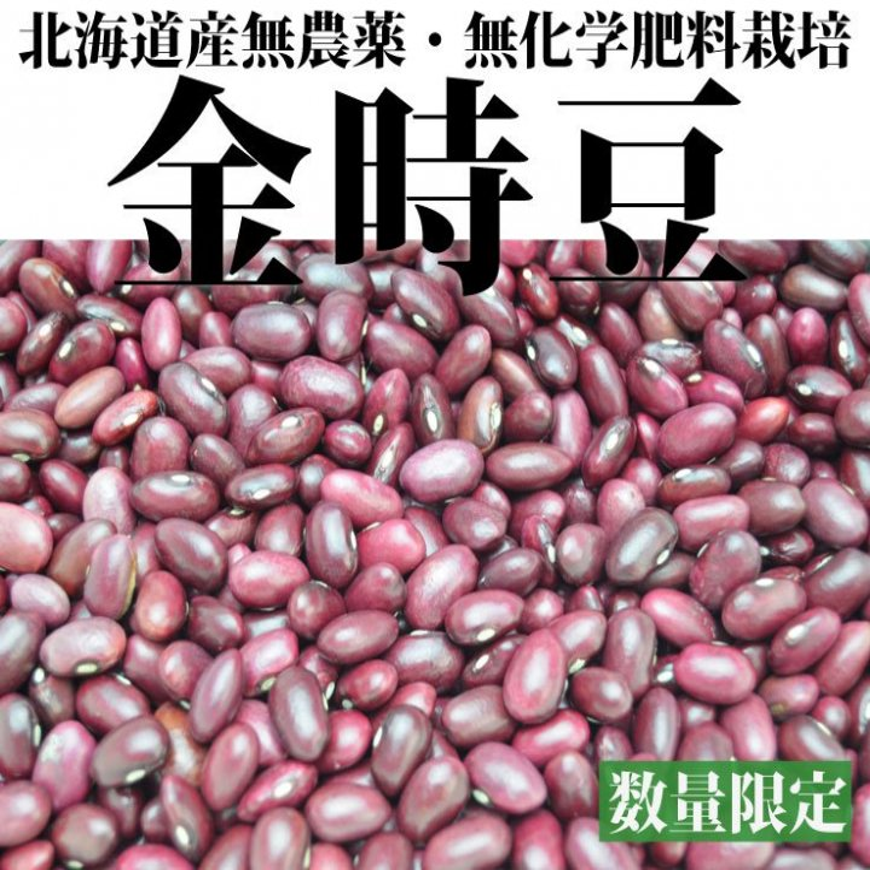 金時豆500g-北海道産無農薬 2017年度産