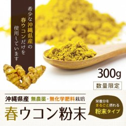 沖縄産春ウコン粉末300g(有機原料100%)-約3ヵ月分