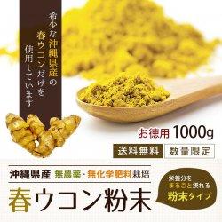 沖縄産春ウコン粉末1000g(有機原料100%)-約10ヵ月分【送料無料】