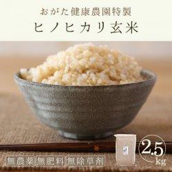 ヒノヒカリ玄米2.5kg(おがた健康農園-熊本県産)無農薬・無肥料栽培【2020年度産新米】 【2020年度産新米】