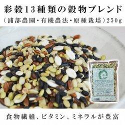 彩穀13種類の穀物ブレンド(浦部農園・有機農法・原種栽培)250g【送料無料】*メール便での発送*