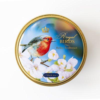 <img class='new_mark_img1' src='https://img.shop-pro.jp/img/new/icons11.gif' style='border:none;display:inline;margin:0px;padding:0px;width:auto;' />RICHARD / Royal Birds / Robin Redbreast