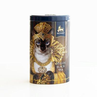 RICHARD / Royal Cats / シャム猫