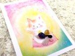 引き寄せ招き猫と五芒星の魔法セット