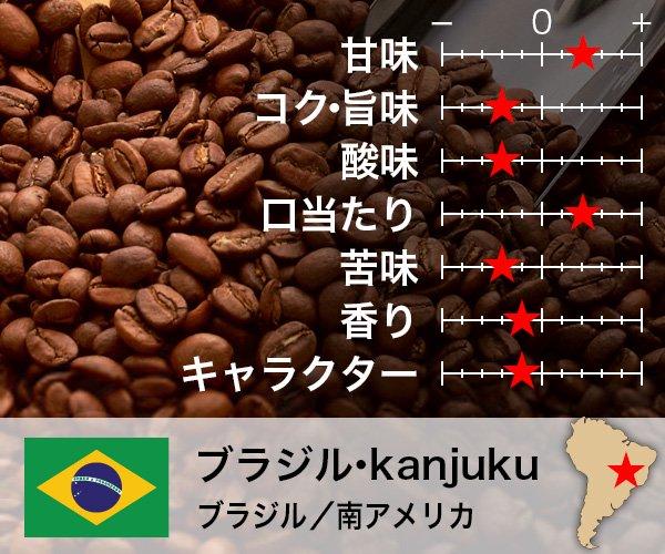 ブラジル kanjuku
