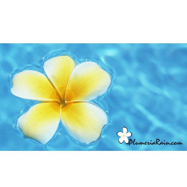 【ハワイアン雑貨コスメ】Plumeria Rain/ディフューザー(ピカケ)