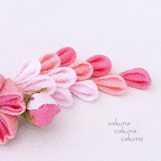 桜-SAKURA-櫻 * サクラサクラサクラ