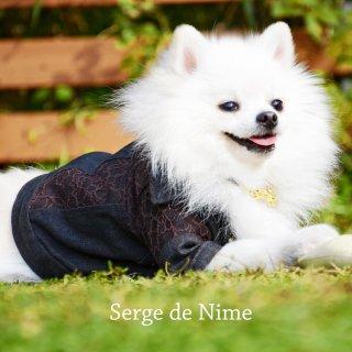 Serge de Nime * セルジュドゥニーム