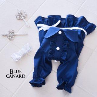 Blue Canard