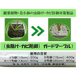 植木鉢用ガードマーブル233g2セット