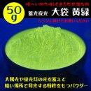 レジン用 蓄光夜光パウダー 黄緑色 大袋 50g
