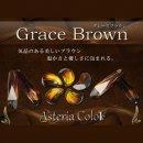 レジン道 アステリアカラー(液状レジン着色剤) ◆グレースブラウン