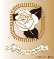 【少量タイプ】Arabian White Rose〜アラビアンホワイトローズ〜(純白・深い尊敬)