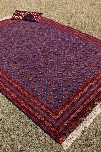 アフガン最高級絨毯 ホジャロシュナイ 236x178