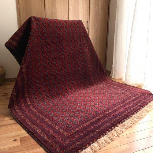 艶々 やっぱりホジャロシュナイ! 最高級アフガン絨毯   242x173