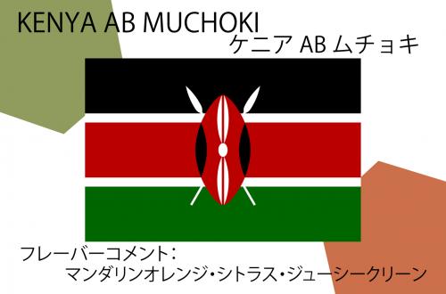 KENYA AB MUCHOKI - ケニア AB ムチョキ -150g