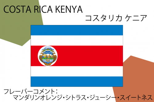 COSTA RICA KENYA - コスタリカ ケニア - 300g