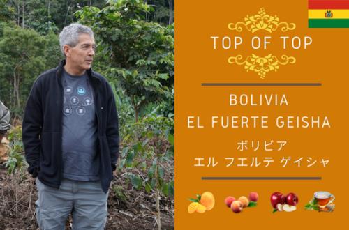 Bolivia El Fuerte Geisha Natural- ボリビア エル・フエルテ ゲイシャ ナチュラル - 100g