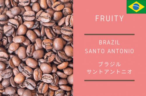 BRAZIL SANTO ANTONIO -ブラジル サント アントニオ- 300g