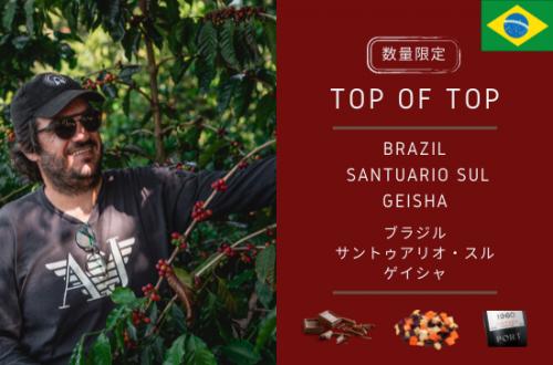 数量限定販売 BRAZIL  SANTUARIO SUL GEISHA -ブラジル サントゥアリオ・スル ゲイシャ- 150g