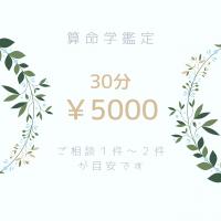 算命学鑑定 電話・対面鑑定 30分