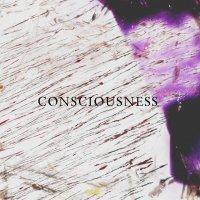 【Melody♪Work 25】コンシャスネス #CONSCIOUSNESS/メロディクリスタルワーク