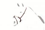 【Equipe】鼻革(ロープタイプ)BR41