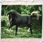 Horse Persian Carpet 73-60