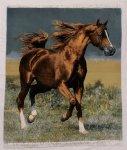 Horse Persian Carpet 97-84