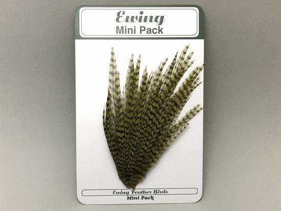 タイイング(毛鉤製作) マテリアル-Ewing コックハックル ドライフライ・ミニパック #12-14 オリーブグリズリー