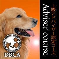 上級アドバイザー認定コース Dbca犬の行動心理カウンセリング協会