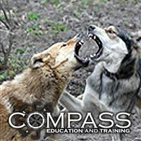 Canine Aggression Diploma Dbca犬の行動心理カウンセリング協会