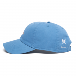 DVUS Cap(Light Blue)