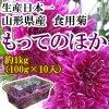 生産日本一 山形県産食用菊 もってのほか もって菊 1kg