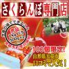 【予約】【秀品】佐藤錦 1kg バラ (500g パック × 2入) L【サクランボ 専門店】