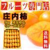 たっぷり5kg(訳あり)ファン続出の庄内柿が2380円!