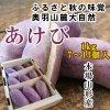 山形県産 あけび1kg(7〜13個入)(山菜,アケビ,100箱限定)