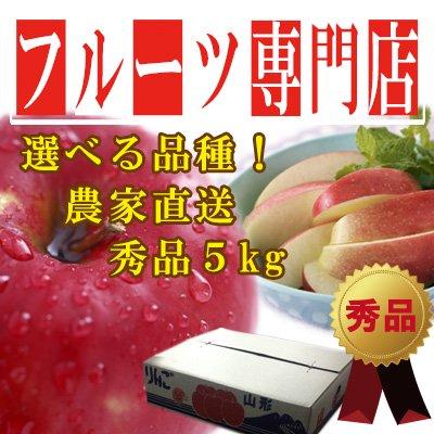 【リピート急増中!】山形産 ふじ りんご 5kg 秀品 16~20玉入