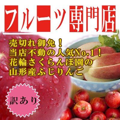 【★リピート急増中!】【訳あり】山形産 ふじ りんご 10kg 30~60玉入