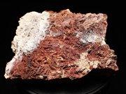 ネバダ産カルセドニー <バライト仮晶> (Chalcedony Pseudomorph after Barite / Nevada)