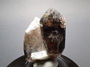 ポーランド産スモーキークォーツ、ベイブナイト&スチェゴマイト (Smoky Quartz, Bavenite & Strzegomite / Poland)