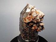 マラウイ産スモーキークォーツ、リーベカイト&シデライト仮晶 (Smoky Quartz, Riebeckite & Goethite after Siderite / Malawi)