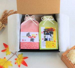 七五三  初節句 出産内祝名入れ 写真付 プチギフト結婚 お米 3合×2個 詰め合わせ箱