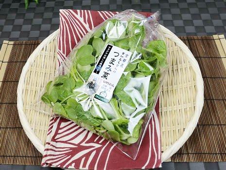 〈京都産〉際徳さんのつまみ菜(淀産)/クール便