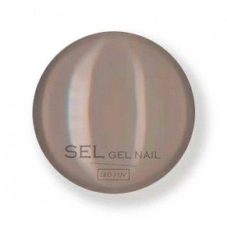 【SELGELNAIL】カラージェル5004M<マットなブラウンベージュ>