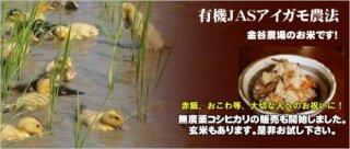 新潟県産 <br />合鴨有機農法コシヒカリ<br />(1.5kg、5kg)