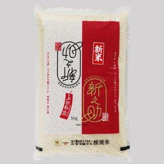 新潟県産 新之助<br />(1kg、2kg、5kg)
