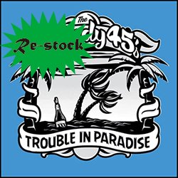 THE STEADY 45'S / TROUBLE IN PARADISE