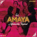 LOS AMAYA / VOLUME 1 AFRORUMBA TROPICAL