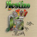 MESTIZO L.A. / MIXING IT UP